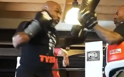 Tyson, una macchina da pugni in allenamento. VIDEO
