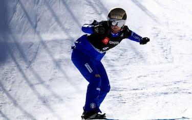moioli snowboard