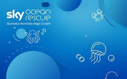 Giornata Mondiale degli Oceani: l'impegno di Sky