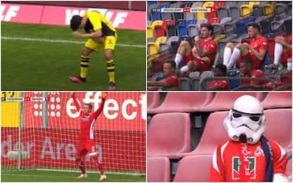 Insetti e stranezze: la giornata di Bundes. VIDEO