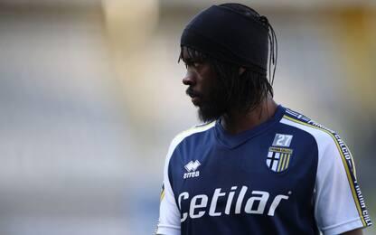 Benevento, obiettivo Gervinho: aumenta la fiducia