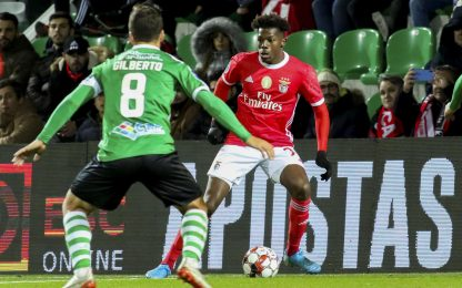 Napoli su Nuno Tavares del Benfica: ecco chi è
