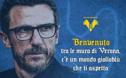 Di Francesco è del Verona: accordo fino al 2023