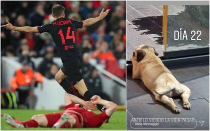 Vittoria a Liverpool, Llorente chiama cane Anfield