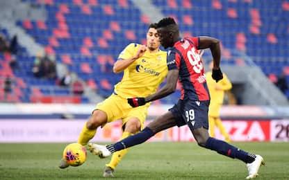 Verona-Bologna, dove vedere la partita in tv