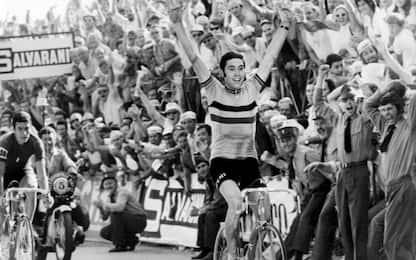 Merckx, 75 anni: il Cannibale campione indomito