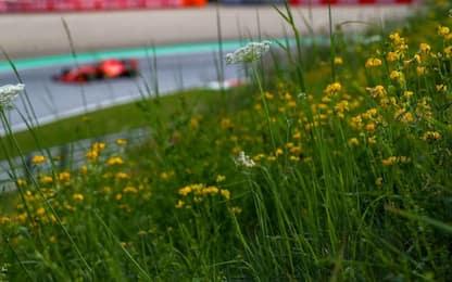 Stiria, primo round in Austria. GP alle 15