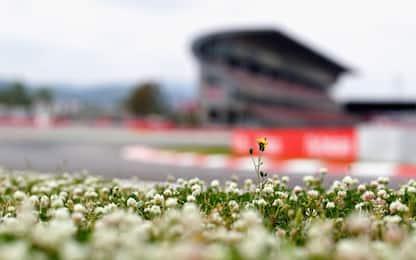GP di Spagna, gli orari: qualifica e gara alle 15