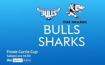 Finale Currie Cup, Bulls-Sharks oggi LIVE su Sky