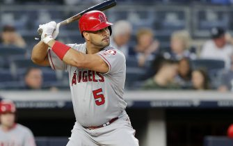 NEW YORK, NEW YORK - SEPTEMBER 19:  (NEW YORK DAILIES OUT)  Albert Pujols #5 of the Los Angeles Angels of Anaheim in action against the New York Yankees at Yankee Stadium on September 19, 2019 in New York City. The Yankees defeated the Angels 9-1 to clinch the American League East division. (Photo by Jim McIsaac/Getty Images)