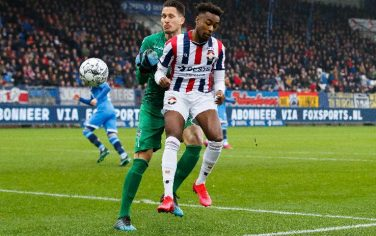 willemii-heraclesalmelo-1061475