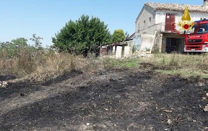 Incendi: fiamme sterpi e vegetazione, due ettari in fumo