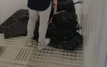 Pesca: Porto San Giorgio, sequestrato 225 kg pescato
