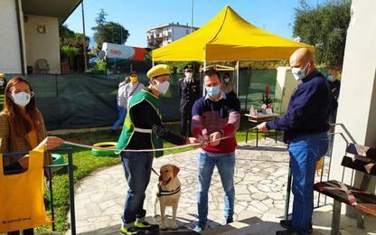 Animali: Marche; Legambiente, 341mila cani e 15mila gatti