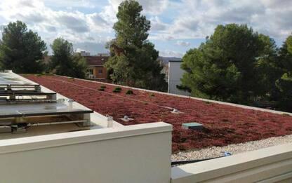 Sostenibilità: a Pesaro una delle scuole più green d'Europa