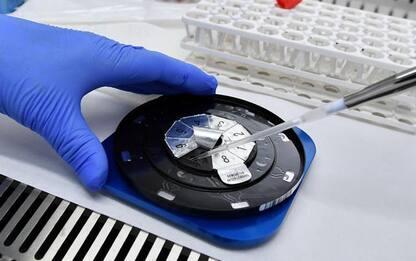 Covid: Marche, 492 casi da 'molecolare' e 42 da 'antigenico'