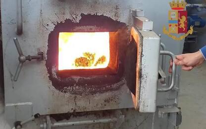 Droga: Ancona, distrutti 500 kg sequestrati tra 2018 e 2020