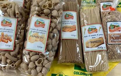 Pasta Day: Marche protagoniste, 3,7 mln quintali grano duro
