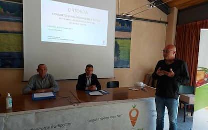 Agricoltura: 12 aziende con marchio a km zero 'OrtoVda'