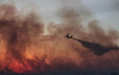 In fumo 40 ettari bosco nel Barese