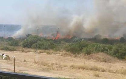 Incendio in parco naturale Bari, canadair per domare fiamme