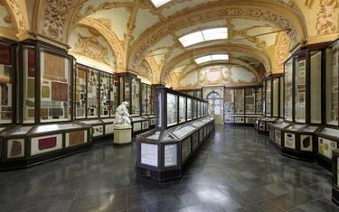 Musei I Civici Di Modena Sbarcano Su Wikipedia Sky Tg24