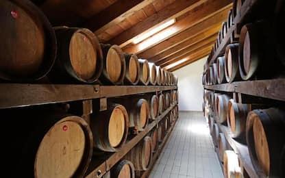 In Germania più tutela per l'aceto balsamico di Modena