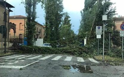 Nubifragio a Ferrara, danni in città