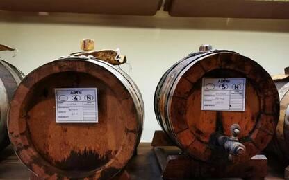 Aceto balsamico Modena: Patuanelli, lo tuteleremo da attacchi