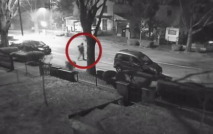 Delitto di Faenza, 'il sicario' confessa: ha ucciso per 20mila euro e un'auto
