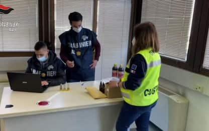 Sequestrati 2,6 kg 'droga dello sciamano', due arresti