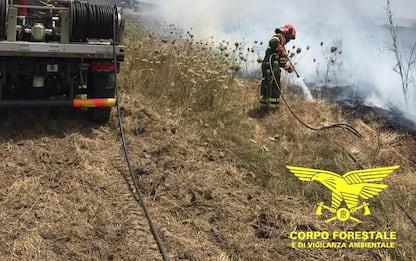Incendi: fiamme a Talana, Monastir e Villaspeciosa