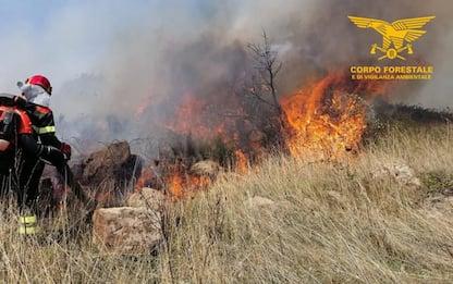 Incendi: 2 volontari lotta a fuoco arrestati in Sardegna