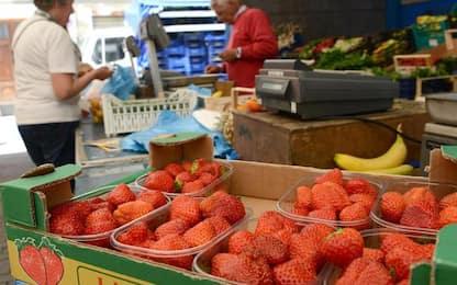 Col Covid salgono prezzi a Cagliari,+2% alimentari e servizi