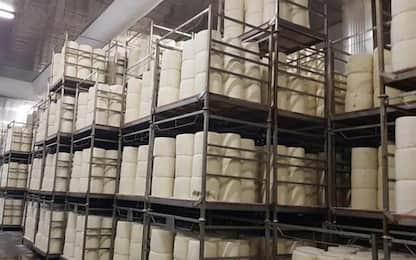 Alimentare: Pecorino romano Dop scommette su mercato tedesco
