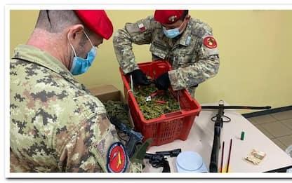 Nuova piantagione marijuana in Ogliastra, arrestato 23enne