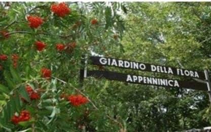 'Giardino flora Appenninica', Paola Fortini nuovo direttore