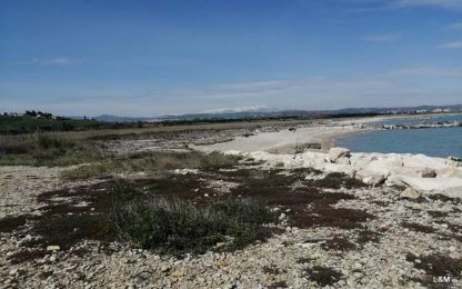 South Beach: Lucchese, progetto è forma colonialismo