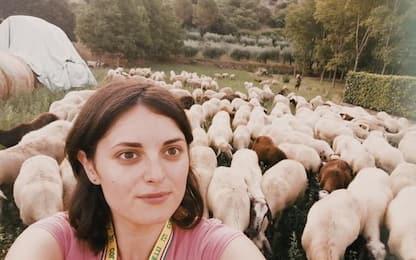 Gps per trovare pecore al pascolo, 250 collari e telefonino