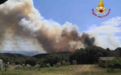 Incendi: già 50 ettari bosco bruciati in Maremma