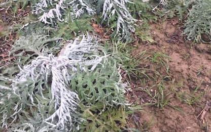 Maltempo: vento siberiano verso Toscana, c'è allerta gialla