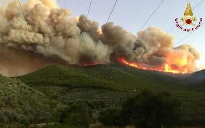 Rogo monte Pisano, pm, condannare il piromane a 15 anni