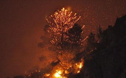 Incendi, piromane del Monte Serra condannato a 12 anni