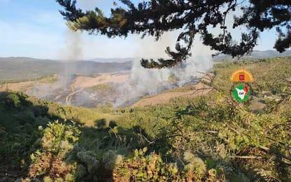 Incendi, rogo boschi Maremma e nel Pisano,inviati elicotteri