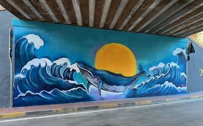 Vallecrosia colorata di street art