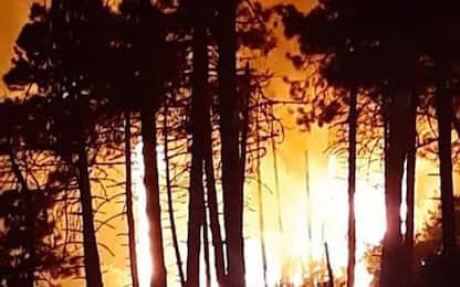 Notte di fuoco nei boschi di Casarza