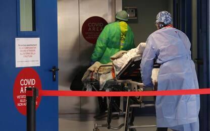 Covid: 452 nuovi casi, 7 morti, più positivi meno ricoverati