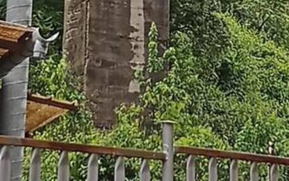 Stop a tir su viadotto: ispettore, frenate rischiano di deformare pile