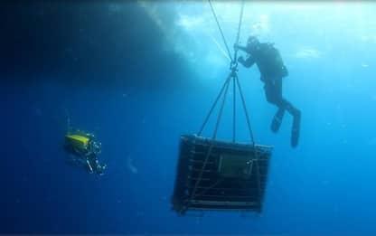 Vino: a Portofino si sperimenta il cantinamento sottomarino
