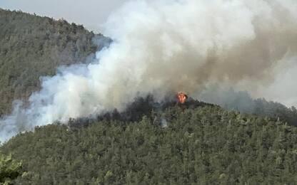 Incendi L'Aquila: più forze terra e cielo, allarme a Pettino